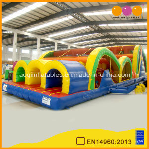 Three Lane Inflatable Obstacles Course (AQ1482) pictures & photos