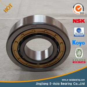 Long Cylindrical Roller Bearing pictures & photos