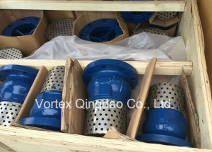 Flange End Foot Valve with Filter pictures & photos