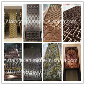 Stainless Steel Screen/Metal Screen pictures & photos