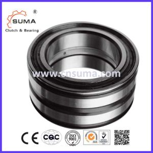 Double Row Full Complement Cylindrical Roller Bearings (SL01) pictures & photos