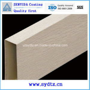 High Quality Thermal Transfer Polyester Powder Coating pictures & photos