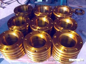 Teel So RF Forged Flange Products pictures & photos