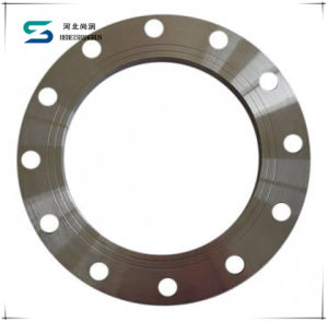 ANSI SS304 Forged Plate Flange pictures & photos