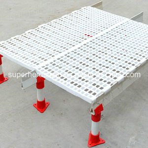Poultry Slat and Support for Poultry Farm House pictures & photos