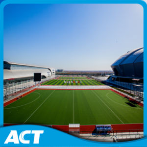 Hockey Field Plastic Grass with 12mm Height H12 pictures & photos