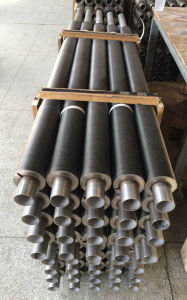 High Stainless Steel Fin Tubes-Fsi-Ssft810 pictures & photos