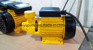Vortex Electric Water Pressure Pumps pictures & photos