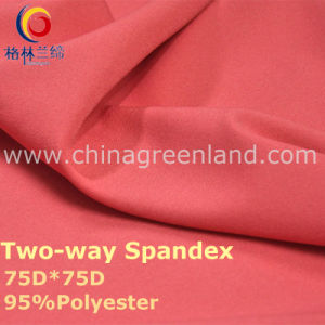 190t Polyester Spandex Dyeing Fabric for Fashion Garment (GLLML238) pictures & photos