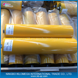 Carrier Roller with Good Quality for Exporting pictures & photos