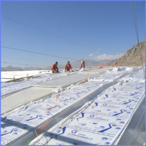 4/6/8/10mm PC Double Wall Polycarbonate Hollow Sheet for Roofing Material pictures & photos