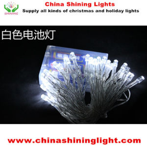4m 40LED Bulb Blue Color Varies Color Clear Transparent Wire Battery Lights pictures & photos