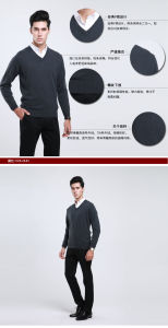 Bn1549 Yak Wool Sweaters/ Cashmere Sweaters/ Knitted Wool Sweaters pictures & photos