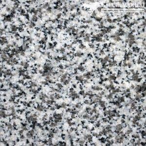 Polishded Bianco Rio G439 Granite Slabs for Countertops & Vanities (MT006) pictures & photos