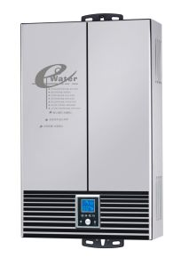 Flue Type Instant Gas Water Heater/Gas Geyser/Gas Boiler (SZ-RS-38) pictures & photos