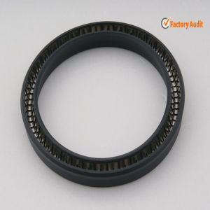 PTFE Spring Energized Seal with Slanted Coil Spring pictures & photos