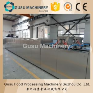 Ce Approved Chocolate Mold Filling Machine pictures & photos