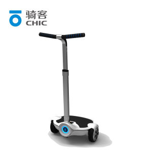 Two Wheels Balancing Electric Scooter/ Mobility Scooter