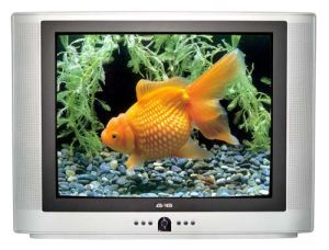 CRT Color TV 29T8 (29 inch)