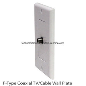 F Jack Wall Plate pictures & photos
