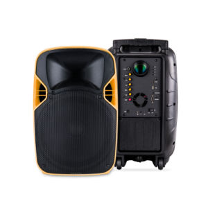 12 Inches Plastic PA System Stage Speaker with LED Projector pictures & photos