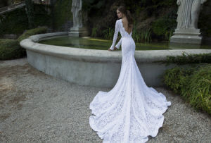 2017 French Lace Long Sleeves Mermaid Wedding Dress (Dream-100106) pictures & photos
