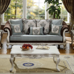 Classical Fabric Sofa with Table Set for Home pictures & photos