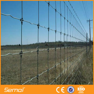 High Tensile Galvanised Hinge Joint Cattle Farm Fence for Grassland pictures & photos