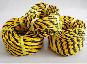 Tiger PE Rope for Southeast Asian Market pictures & photos