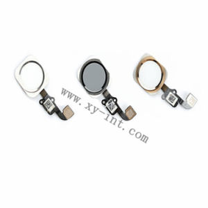 Home Button with Flex Cable for iPhone 6 Mune Return Button pictures & photos