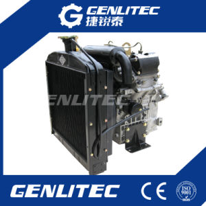 Water Cooled V-Twin Cylinder 19HP Diesel Engine [ Changchai EV80 ] pictures & photos