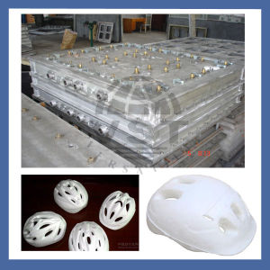 EPS Aluminium Tool for Vegetable Fruit Helm Boxes pictures & photos