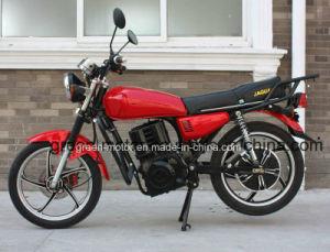 1500W / 2000W Electric Bike Motor (Juguar) -Slope Climbing Ebike