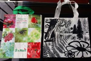 Promotional Non Woven Shopping Bag, Tote Bags OEM Eco PP Non-Woven Reusable Shopping Bag pictures & photos
