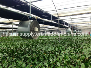Greenhouse 24′′axial Flow Fan Ventilation Fan Cooling Fan pictures & photos