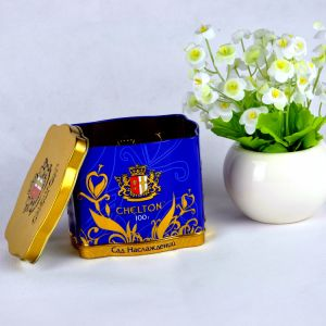 Custom Color Export Square Tea Tin Box for Gift pictures & photos