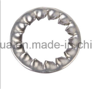 Internal Serrated Lock Washer DIN6798 J (Factory) pictures & photos