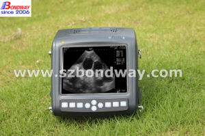 Veterinary Diagnostic Ultrasound Scanner with Probe