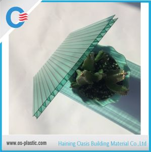 Green 6mm Twin Wall Polycarbonate Plastic Hollow Sheet pictures & photos