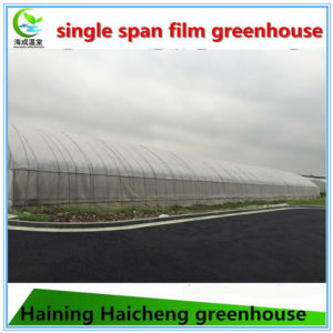 Agriculture Greenhouse with Ventation System pictures & photos