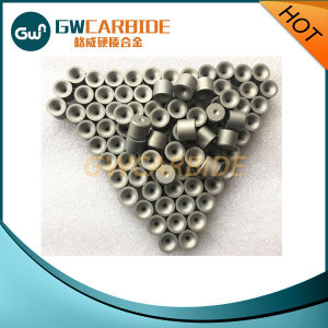 Tungsten Carbide Wire Drawing Dies Nibs with Good Quality pictures & photos