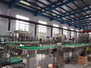 Full Automatic Drinking Mineral Water Production Line pictures & photos