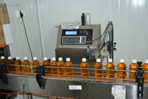 Pet Bottle Juice Beverage Filling Machine pictures & photos