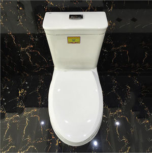 Foshan Sanitary Ware 4D Flushing One Piece Ceramic Toilet pictures & photos