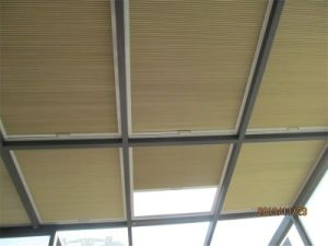 European Style Honeycomb Blind Motorized Skylight Beehive Blinds pictures & photos
