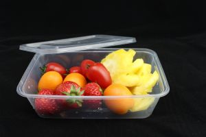 Disposable Food Grade Plastic Foodcontainer-Hot Sale pictures & photos