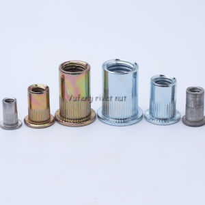 Carbon Steel /Stainless Steel Flat Head Knurled/Round Body Rivet Nut pictures & photos