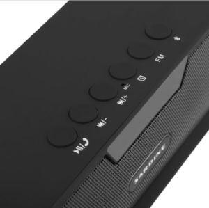 Original Sardine Sdy-019 HiFi Portable Bluetooth Speaker 10W FM Radio Wireless Speaker Stereo FM TF PC Nizhi Sdy019 pictures & photos