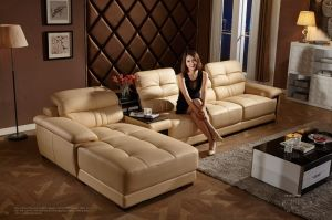 Modern Living Room Sofa with Sectional for Home Furniture pictures & photos