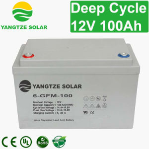 Free Shipping 12V 100ah Sealed Lead Acid Deep Cycle Battery Price pictures & photos